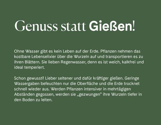 Wienss Innenausbau GmbH - Innenausbau, Objektbau, Museumsbau - hier: Gartenmuseum Lennestadt - www.wienss-innenausbau.de - Gartenalphabet G wie Gießen