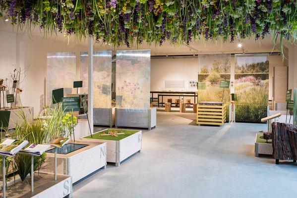Wienss Innenausbau GmbH - Innenausbau, Objektbau, Museumsbau - hier: Gartenmuseum Lennestadt -www.wienss-innenausbau.de - Hochbeete Ansicht mit Blumenwiese über Kopf
