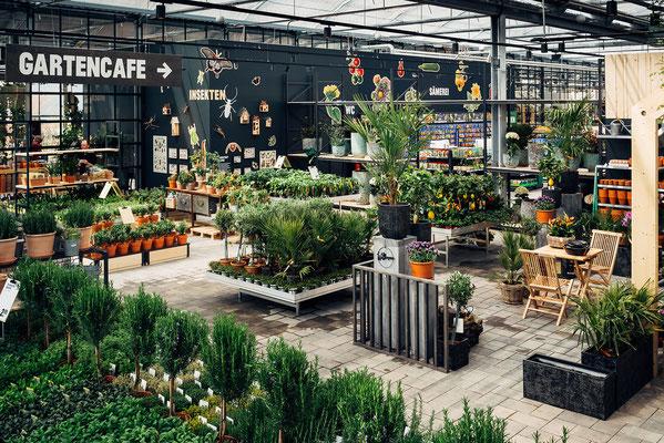 Wienss Innenausbau GmbH - Innenausbau, Objektbau, Museumsbau - hier: Gartenmuseum Lennestadt - www.wienss-innenausbau.de - Ansicht Deko und Pflanzen