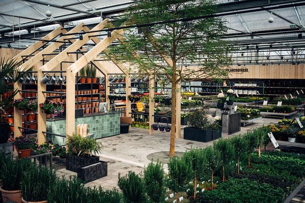 Wienss Innenausbau GmbH - Innenausbau, Objektbau, Museumsbau - hier: Gartenmuseum Lennestadt - www.wienss-innenausbau.de - Ansicht Verkaufsraum