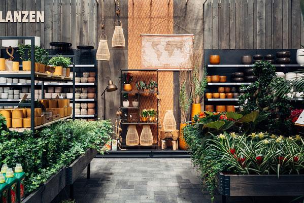 Wienss Innenausbau GmbH - Innenausbau, Objektbau, Museumsbau - hier: Gartenmuseum Lennestadt - www.wienss-innenausbau.de - Ansicht Verkaufsräume mit Pflanzen