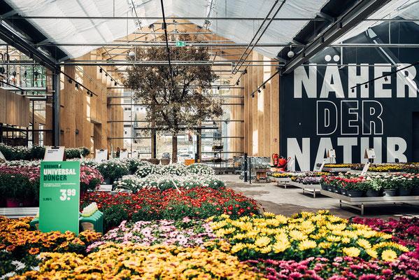 Wienss Innenausbau GmbH - Innenausbau, Objektbau, Museumsbau - hier: Gartenmuseum Lennestadt - www.wienss-innenausbau.de - Ansicht Beetfplanzen