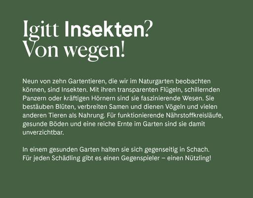 Wienss Innenausbau GmbH - Innenausbau, Objektbau, Museumsbau - hier: Gartenmuseum Lennestadt - www.wienss-innenausbau.de - Gartenalphabet I wie Insekten