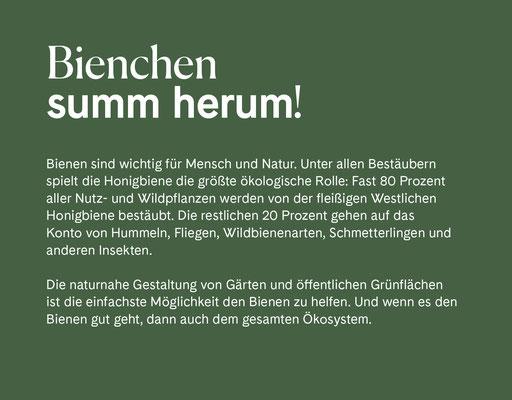 Wienss Innenausbau GmbH - Innenausbau, Objektbau, Museumsbau - hier: Gartenmuseum Lennestadt - www.wienss-innenausbau.de - Gartenalphabet B wie Biene