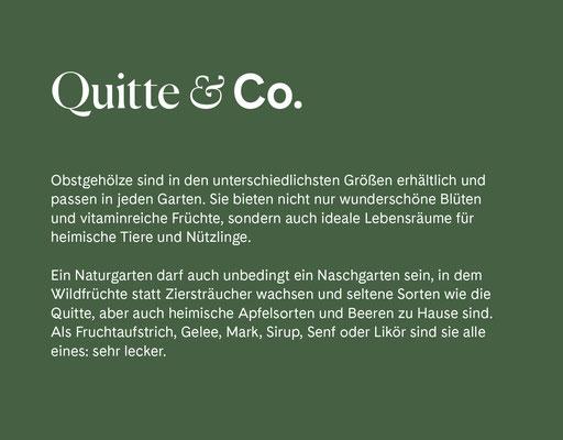 Wienss Innenausbau GmbH - Innenausbau, Objektbau, Museumsbau - hier: Gartenmuseum Lennestadt - www.wienss-innenausbau.de - Gartenalphabet Q wie Quitte