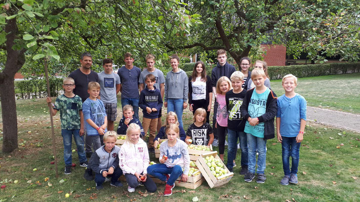 Apfelernte mit Young Caritas Soest II