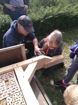 Wir bauen ein Insektenhotel I