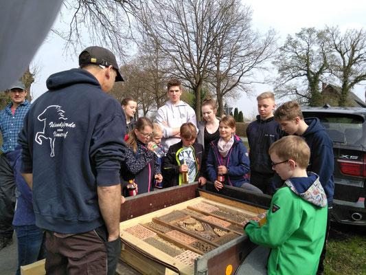 Wir bauen ein Insektenhotel II