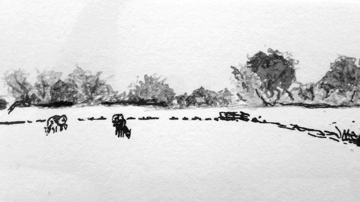 Detail van pentekening. (C) Marjolein Coenrady