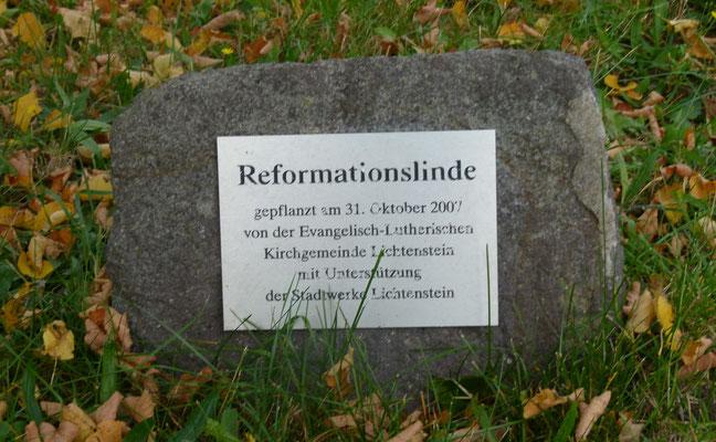 ... und speziell über die neue Reformationslinde.