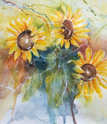 Sonnenblumen in Aquarell (Verkauft)