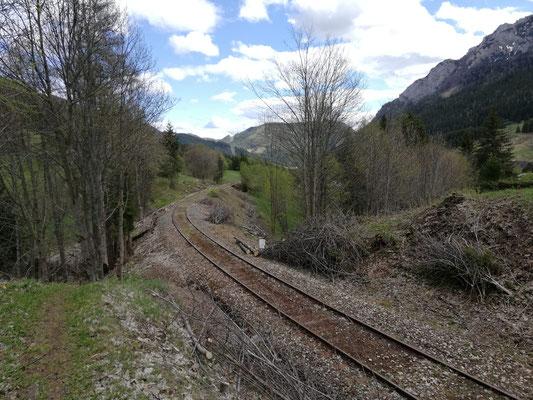 Der fast vollständig freigeschnittene Durchlass bei Streckenkilometer 14.