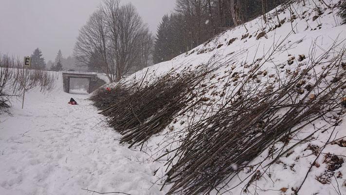 """Von der ehemaligen """"Bundesstraßenbrücke"""" bei km 13,888 ..."""