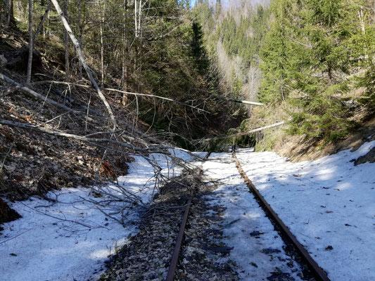 Nach den ersten Begehungen wurden die Schäden auf der Nordrampe sichtbar.