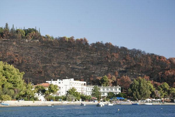 2007 hat ein Feuer viel Wald vernichtet