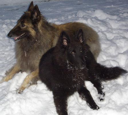 Akira und Lara