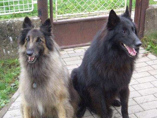 Lara und Black Bandit