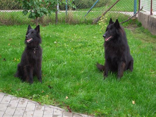Akira und Black Bandit