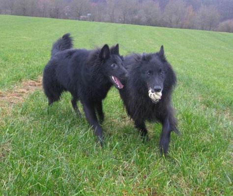 Dark Odin und  Black Vincent von dem Schatten hinter mir 2019