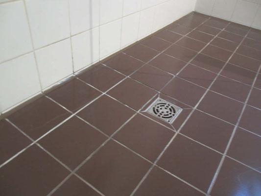 Fliesen in Duschraum entkalkt und saniert
