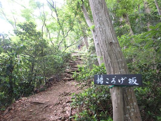 雨巻山手前で「猪転げ坂」が出現。頑張って登りましょう!