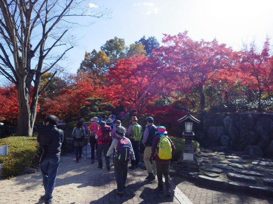 桜山公園に到着。