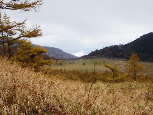 池の平湿原も見渡せます。