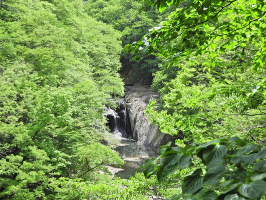少し寄り道して生瀬滝を見学。小さな滝です。