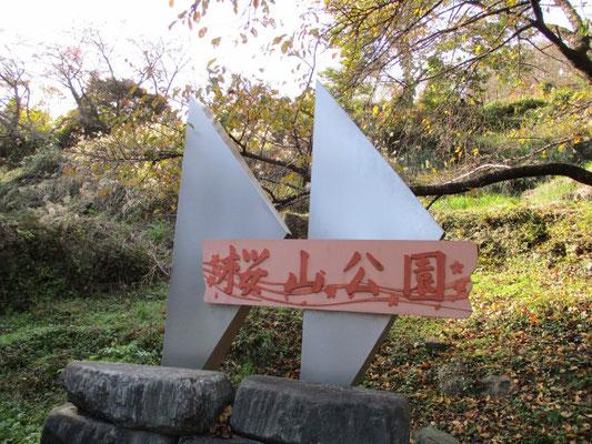桜山公園、オススメです!!