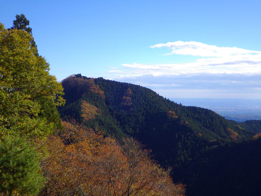 長尾平展望台からは、関東平野と日の出山が望めます!!