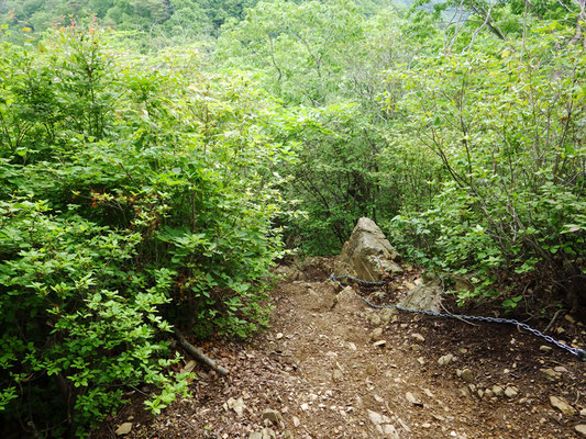 足尾山へ向かう急坂。