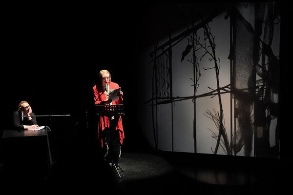 V. Spott mit Schattenbildern von GO, Mousonturm Frankfurt, Fokus Lyrik