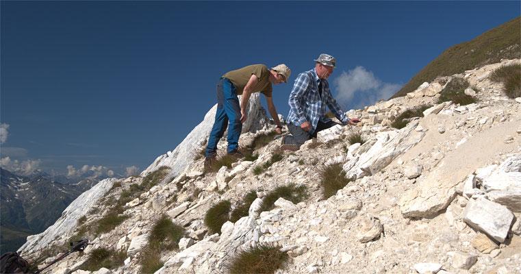 An der Fundstelle von grünen Turmalinen in zuckerkörnigem Dolomit