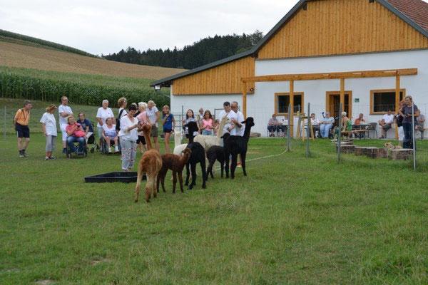 Aber auch andere Gruppen haben uns besucht - wie hier die Caritas-Gruppe aus Bayern...