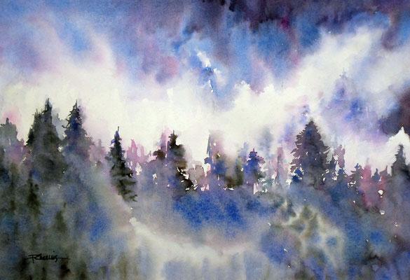 Brume en forêt - 55x65 cm