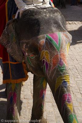 painted inidan elefant