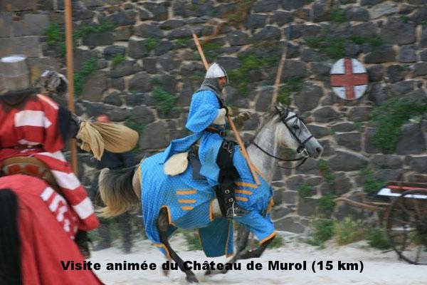 Visite animée du Château de Murol (15 km)