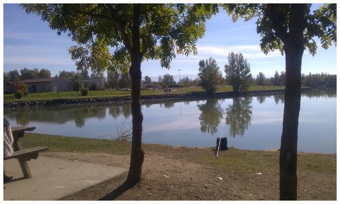 Base des étangs Sor et Agout- vue d'un lac -