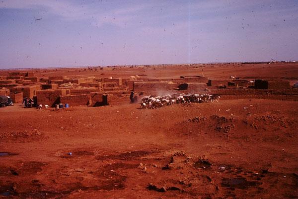 Dorf in der Sahelzone. Kurz nach In Gall.