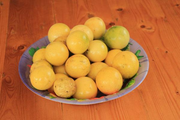 Passionsfrucht oder Maracuya