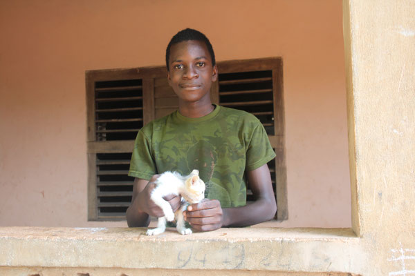 13. Zwei unserer Kätzchen wohnen jetzt in Benin.