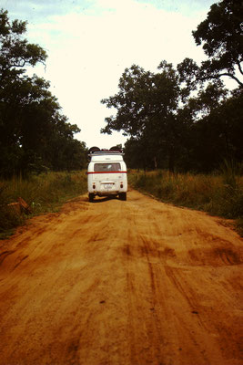 VW Bus auf einer Piste im Wawa Game Reserve