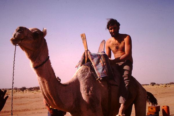Ein Kamel reitet auf einem Dromedar.