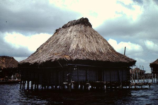 5. Rietgedecktes Haus in Ganvie.