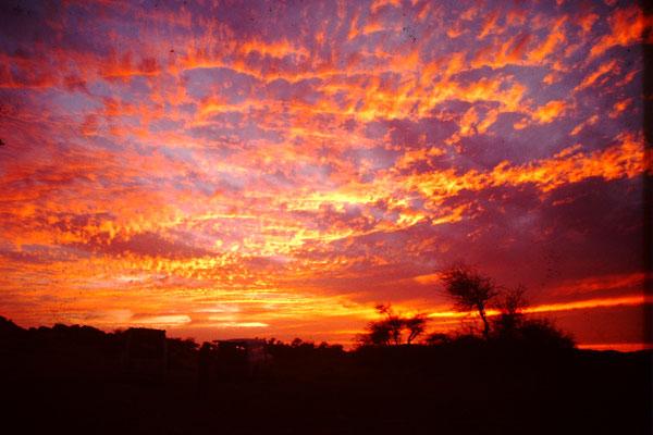 13. Abendrot in der Sahara.