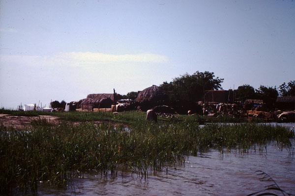 13. Dorf zwischen Mopti und Bandiagara.