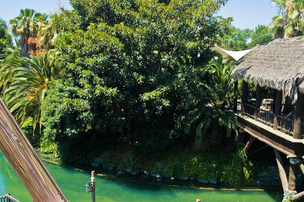 Зона Полинезия и транспортная река в другие зоны