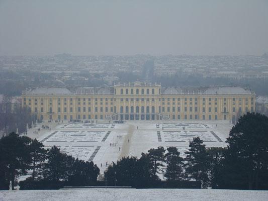 Дворец с вершины холма