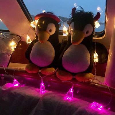 unsere neue Beleuchtung (sieht man es ? Rosa Pinkguine ;-) / new ambient lights (see?? they are pink penguins ;-)