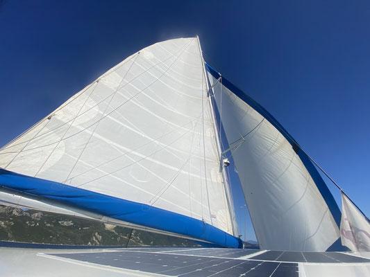 tolles downwind segeln / beautiful downwind sailing